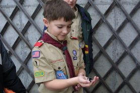 boy scout holding a bird